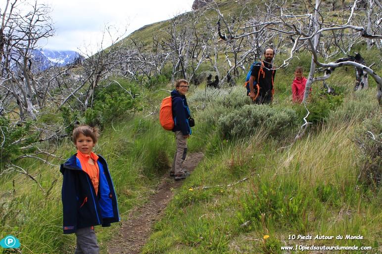 Parc Torres del Paine - Mirador Condor