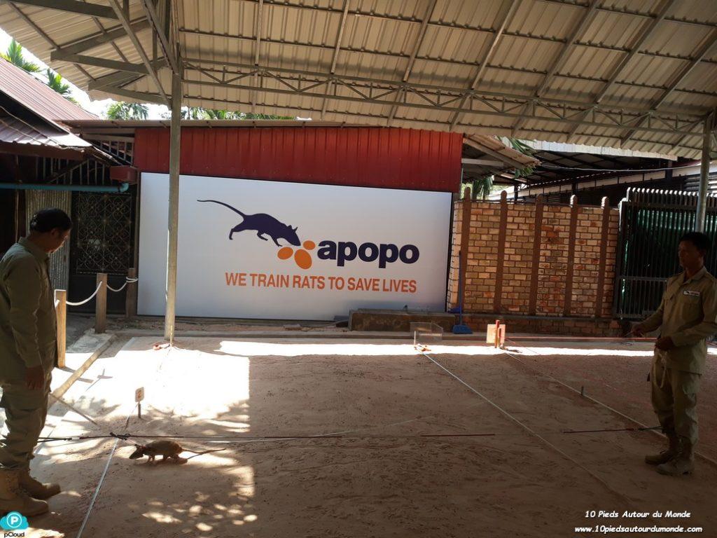 ONG Apopo