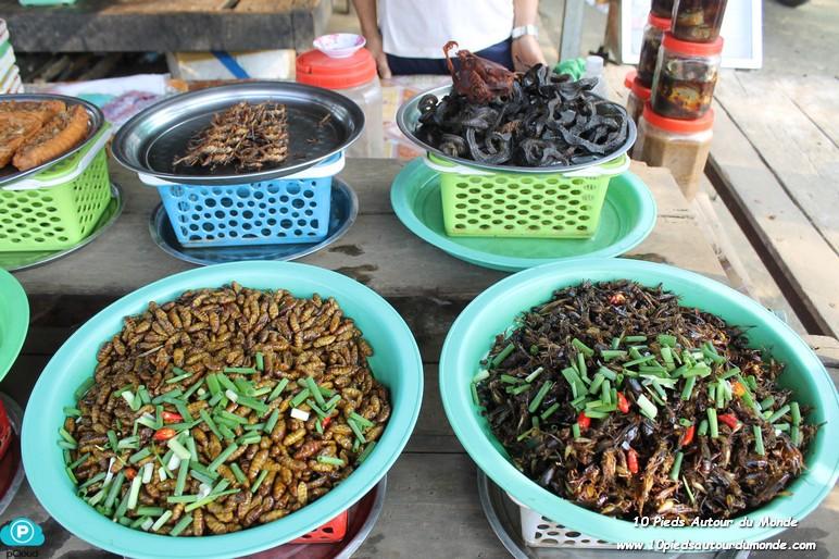 Insectes à manger
