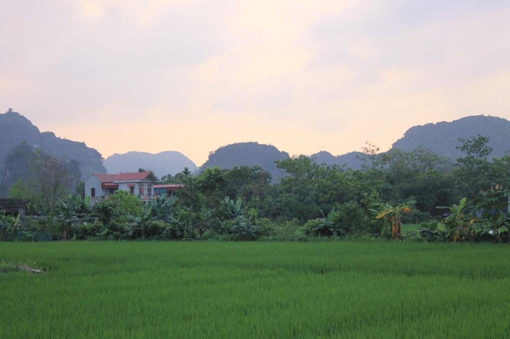 Hang Mua