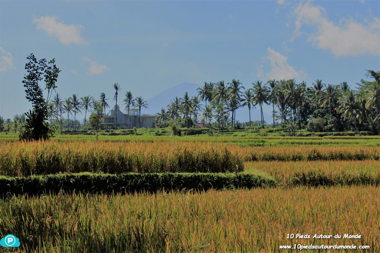 Balade Keliki - Ubud / Mont Agung