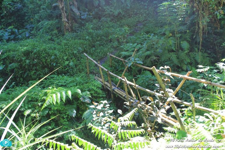 Balade Keliki - Ubud / pont de bambou