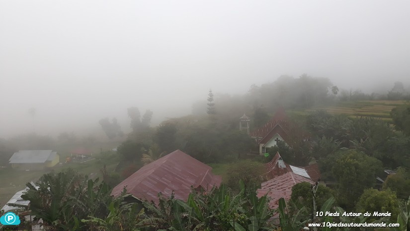 Moni sous le brouillard