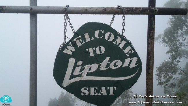 Lipton seat