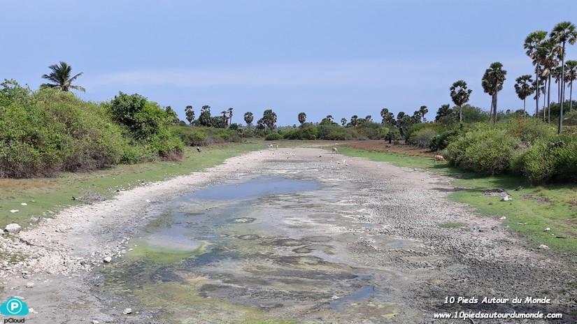 Dambakola Patuna